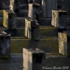 Pier Remains, Leith (Photography JC) Tags: wood port pier wooden dof nail historic depthoffield nails rusted leith nautical derelict