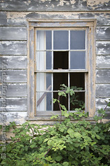 SlowEntry (SloShots Photography) Tags: old travel plant canada green abandoned broken window glass paint aged pane britishcolombia