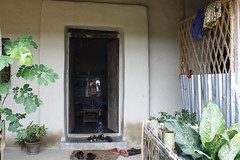(Lil.angelz.dream) Tags: house tree green forest cow kid child hill lifestyle style schoolgirl bd sylhet bangladesh villege fench gogreen khasia upojati mishphotography matirghor