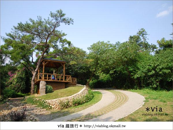 【彰化】彰化藝術高中~教室與森林結合的美麗校區30