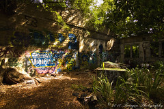 Spot Graff (Paragon-Photography) Tags: trees urban macro building tree art abandoned wall architecture canon landscape photography graffiti hawaii photo decay tag explore northshore 7d honolulu kahuku paragon urbanexplorers canon24105mmf4l canonspeedlite580exii canon7d tokina1116mmf28 canon100mmf28l