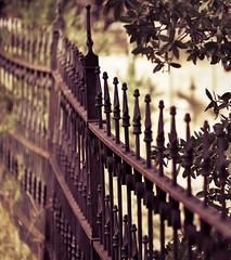Along the Path (sunsinger) Tags: newmexico southwest vintage fence rust dof bokeh ornate pinosaltos nikond90 fencebokeh