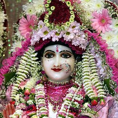 Srimati Radharani's Appearance Day - Radhastami 2010 - Bhaktivedanta Manor - 15/09/2010 - IMG_8567_crop (DavidC Photography) Tags: birthday uk summer england london festival canon temple eos for golden shrine hare day mark room flash sunday 15 september altar sri international ii heath 5d fullframe canopy krishna krsna manor society 15th ef consciousness deity mk hertfordshire watford appearance mandir sensor radha srisri darshan deities 2010 mkii extender markii herts aldenham murti iskcon speedlite 14x bhaktivedanta radharani arati radhe murtis letchmore srimati radhagokulananda radhastami 70200f4is 580exii internationalsocietyforkrishnaconsciousness templeroom 5dmarkii 5d2 radharanis 5dmkii