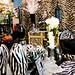 250/365: Zebra Room