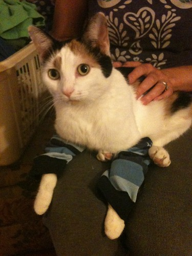 lucy checks nola's bamboo leg warmers for comfort