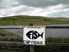 Fish (davekpcv) Tags: sign fishing graphics reservoir carp lettering freshwater