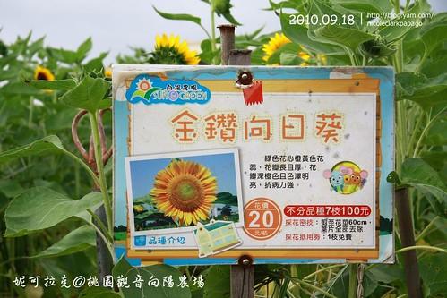 桃園觀音向陽農場20100918-063