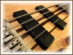 Cort A4, Bartolini! (Mega-Magpie) Tags: music rock bass guitar sony country jazz blues cybershot swing roll a4 cort mk1 bartolini hx5 dschx5v