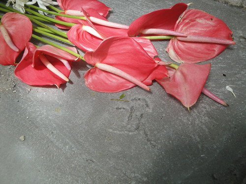 Flowers and Etched Logo