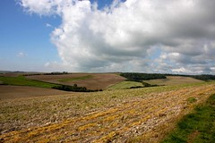 South Downs (GFry Photography) Tags: light shadow sky cloud nature field landscape sussex nationalpark southdowns lewes gfryphotography