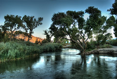 Rope Swing (Ricky Jay) Tags: tree bishop hdr ropeswing owensriver
