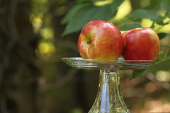 [EXPLORED]   Four Seasons of Honeycrisp Apples (Baking is my Zen) Tags: autumn fall desserts apples applepie fallseason fallharvest honeycrisp honeycrispapples carmenortiz canonrebelt1i bakingismyzen fourseasonsofhoneycrispapples