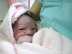 喵寶剛出生