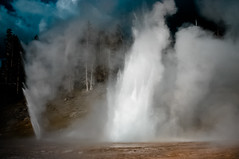 Grand Geyser, Yellowstone [Lightroom 3] (flatworldsedge) Tags: usa fountain vent nationalpark grand spray steam pines yellowstone wyoming geyser eruption bleached lr3 explored lightroom3 yahoo:yourpictures=elements yahoo:yourpictures=waterv2