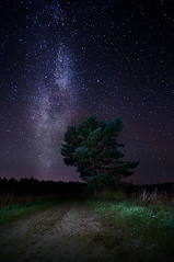 Milky Way (Mikko Lagerstedt) Tags: longexposure nightphotography blue trees light shadow red sky color tree green art nature colors beautiful field night suomi finland dark way lens stars landscape photography star photo high nikon colorful long exposure mood moody view darkness graphic natural image photos unique flash fineart tripod fine perspective award sigma atmosphere iso clear handheld finnish 1020mm milky starry mikko 2010 highiso waterscape sigma1020mm d90 iso2000 nikond90 66s mikkolagerstedt lagerstedt
