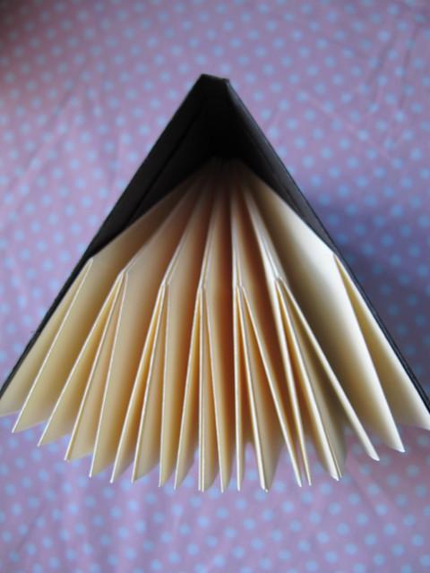 lotus book_7
