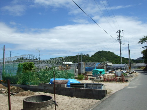尾道 岩子島 画像 14