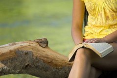 Young woman reading bible (KnightWolf Photography) Tags: woman face female religious one book hand god prayer religion pray praying young christian holy teen soul teenager bible christianity spirituality spiritual scripture gospel hold teenage searching caucasian humbled praising