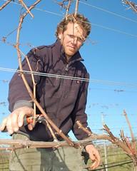 Stefano Lubiana Wines Granton Vineyard Mark Hoey Sept 2010