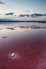 One (DavidFrutos) Tags: blue water rose azul clouds reflections agua salt rosa paisaje minimal alicante filter nubes nd alfa alpha filters minimalismo minimalistic sal reflejos waterscape nwn alacant filtro sigma1020mm filtros neutraldensity salinasdetorrevieja sonydslr densidadneutra davidfrutos α700 spiritofphotography singhraygalenrowellnd3ss