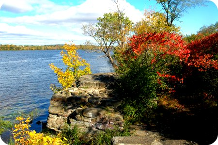 fall leaves among the ruins at Westboro Beach
