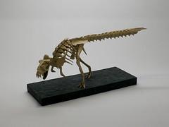 Radek Herink kostra tyranosaura 01 (ondrej.cibulka) Tags: skeleton origami tyranosaurus yoshino fosil brachiosaurus issei kawahata fumiaki