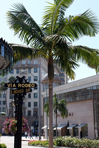 Rodeo Drive ~ Beverly Hills CA