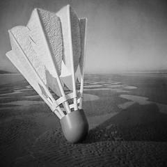 birdie on a beach (Shaefer) Tags: ocean light blackandwhite beach birdie oregon square sand shadows cork feathers pools badminton shuttlecock textured shaefer bigbeach bigbirdie highdragprojectile