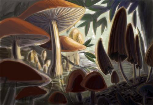 Mushroomcolorstud-10.5.10_c