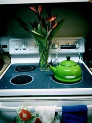 1286587806831 (raemarie) Tags: teapot