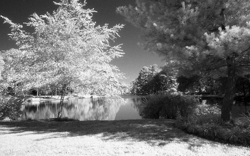 Ilford SFX 200 Infrared Film (6 of 11)