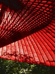 So blue it's black (fleshmeatdoll) Tags: red japan umbrella paper temple kamakura buddhism parasol kanagawa hasedera