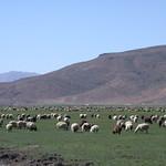 Iran landscape 01 by
