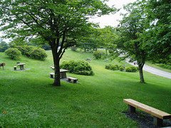 Craggy Gardens picnic area (by: Doug Bradley, creative commons license)