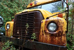 Parked (Mr Perry) Tags: yellow international schoolbus raining ih loadstar sigma1020mm internationalharvester mcleans intheweeds pentaxk10d