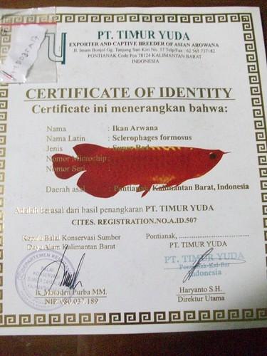 Daftar Nama Perusahaan Perikanan Iswadi | newhairstylesformen2014.com