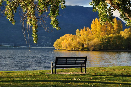 Bench in the Okanagan