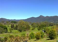 Mount Samson, D'Aguilar Ranges
