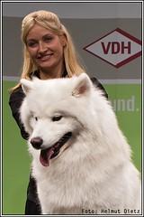 EUKANUBA World Challenge - Finalist aus Deutschland!