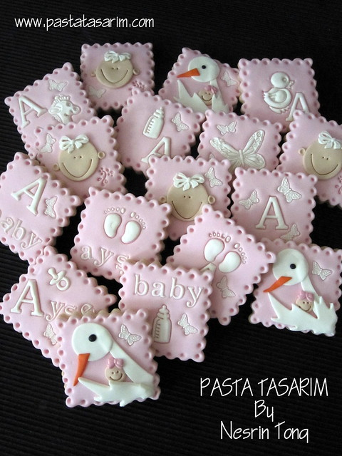 BABY SHOWER COOKIES - STORK AND BABY AYSE