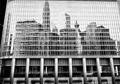 2010-10-17 Chicago Skyline in Reflection