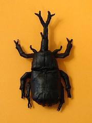 Samurai Helmet Beetle (Marius Iana) Tags: robert bug insect origami helmet beetle samurai marius lang iana