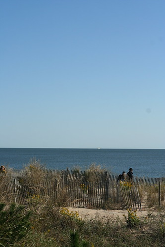 The view of the Atlantic from Delaware