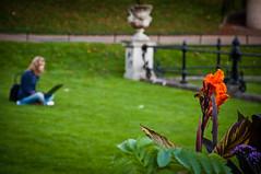 Colourful... (leolumix) Tags: park greatbritain flowers england colour tree green nature grass garden brighton kingdom sunny blumen bin hydepark grn baum colourfull farbenpracht grn farbentrchtig farbentrchtig