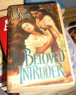Beloved Intruder by Joan Van Nuys
