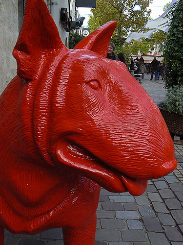 chien rouge.jpg