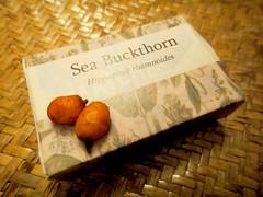 Noma - Rene Redzepi Talk - Sea Buckthorn