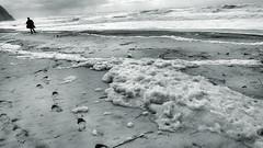 Freedom (Rui Palha) Tags: sea sky people bw blackwhite streetphotography interestingness9 winterbeach noirblanche ruipalha