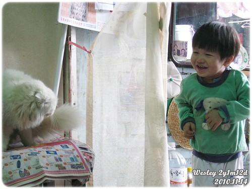 101114-小人與貓