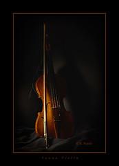 Sauna Violin (Maclobster) Tags: violin bow strings fiddle keithgrajala